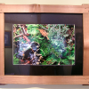 Wildart Photography in hand split cedar picture frame