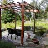 Pond Arbour