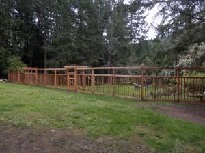 airy cedar fence